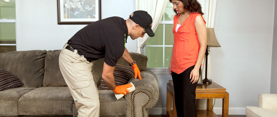 Griffith, IN carpet upholstery cleaning